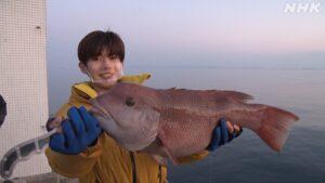 本日放送!『巨大魚&幻の魚を追え!~大阪湾の魚大調査』なにわ男子・長尾謙杜さんと怪魚ハント!